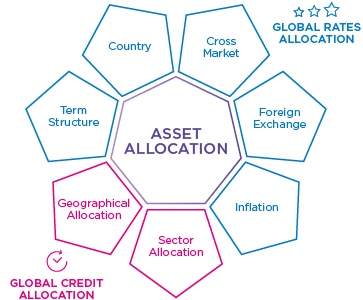 Asset allocation visual